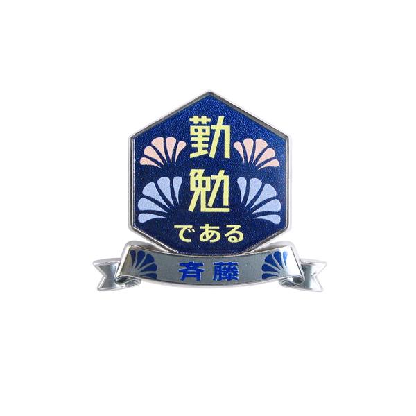 Custom Shaped Metal Commemorative Badge Pin